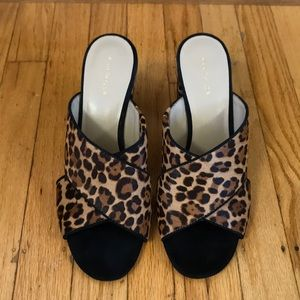 Ann Taylor calfhair mules 🐆